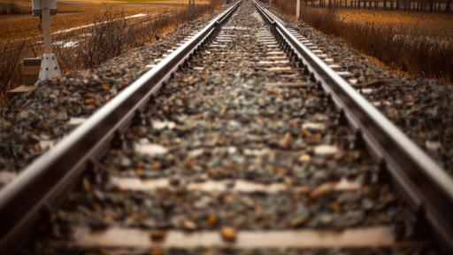 Path Railroad Rails Straight 1425.5E1742c869045