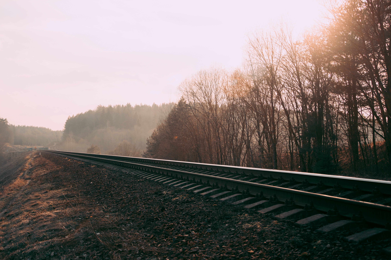 Tracks Late Daytime